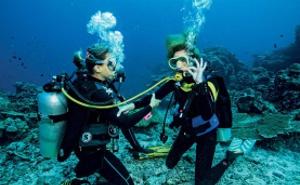 Plongée sous-marine, Chasse sous-marine