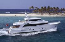 Motor-yacht rapide / à fly fermé