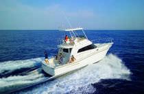 Vedette in-bord / à fly / de pêche sportive / 2 cabines