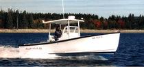 Coque open in-bord / de pêche sportive / T-Top