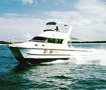 Cabin-cruiser catamaran / in-bord / à fly / de pêche sportive