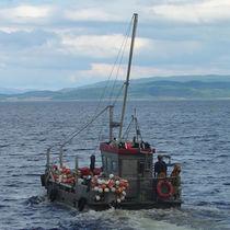 Bateau utilitaire in-bord / catamaran