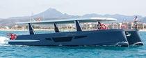 Bateau touristique catamaran