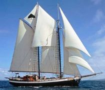 voilier traditionnel (type goélette, sailing-yacht) TREE OF LIFE Covey Island Boatworks