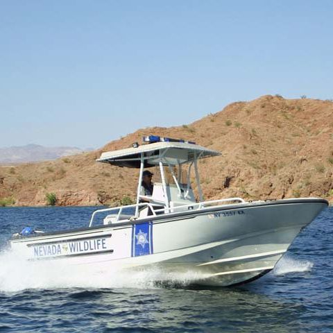 Bateau de surveillance hors-bord 24' JUSTICE Brunswick Commercial and Government Products