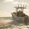 Coque open hors-bord / de pêche sportive / T-Top 262 FISHERMAN Wellcraft