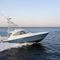 motor-yacht de pêche sportive / à fly / open / coque planante