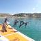 plateforme pour bateau / pour yacht / pour base de loisirs / pour le secteur événementiel