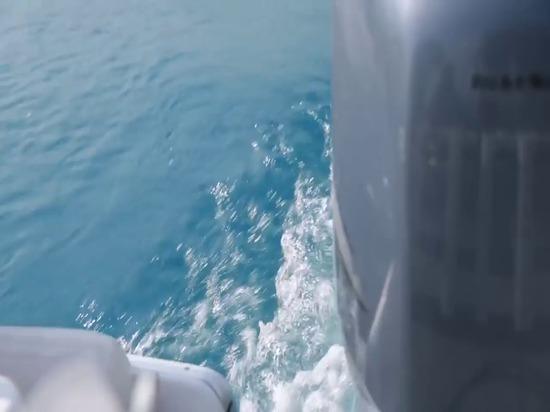 Furuno DRS4D-NXT - le radar a redéfini