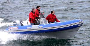 bateau professionnel bateau de pêche professionnelle / bateau de support pour la plongée / hors-bord / bateau pneumatique semi-rigide