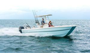 coque open catamaran / hors-bord / bimoteur / de pêche sportive