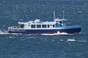 bateau professionnel bateau promenade