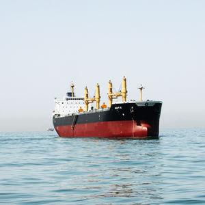 cargo vraquier / Panamax