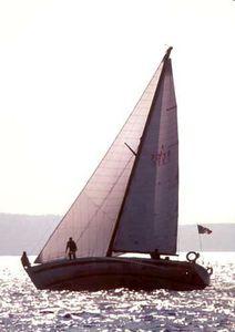 génois / pour voilier de croisière