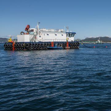 navire spécial barge