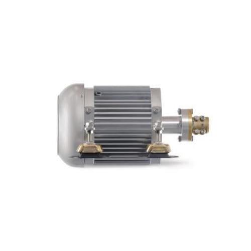 moteur in-bord / plaisance / professionnel / électrique