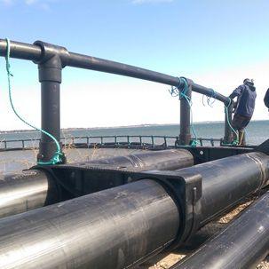 cage à poissons pour l'aquaculture / en plastique / ronde / flottante