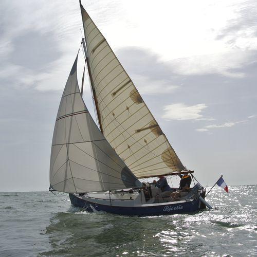 code 0 / pour voilier de croisière / coupe tri-radiale / sur enrouleur