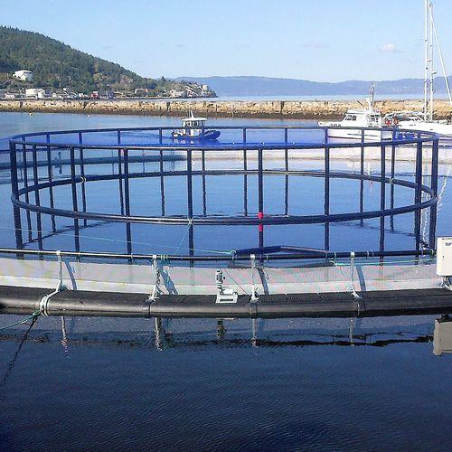 cage à poissons pour l'aquaculture / en plastique / en HDPE / ronde