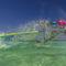planche à voile de vagues / de freestyle