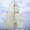 spinnaker asymétrique / code 0 / pour voilier de croisière