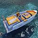 coque open hors-bord / à console centrale / max. 10 personnes / bain de soleil