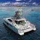 vedette catamaran / in-bord / diesel / bimoteur