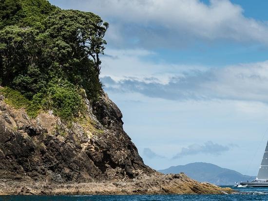 Une tasse positive de millénaire pour le Nouvelle-Zélande