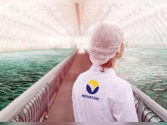 L'énergie propre en aquaculture : utiliser la technologie pour faire pousser des poissons en santé