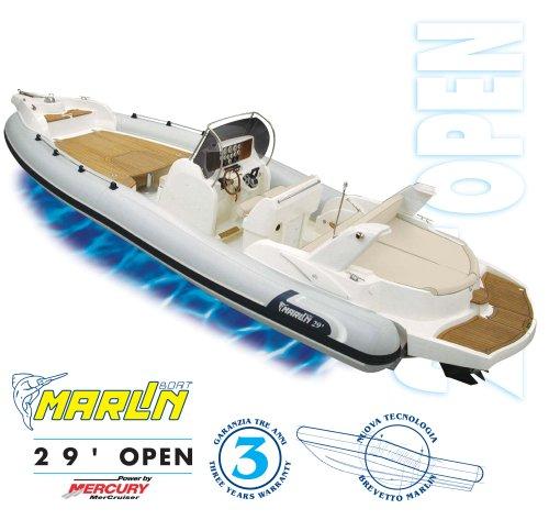 Model 29 open brochure