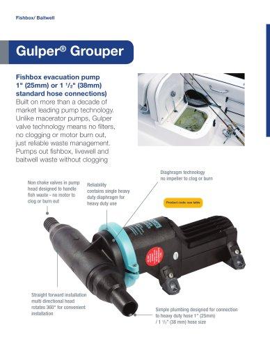 Gulper Grouper