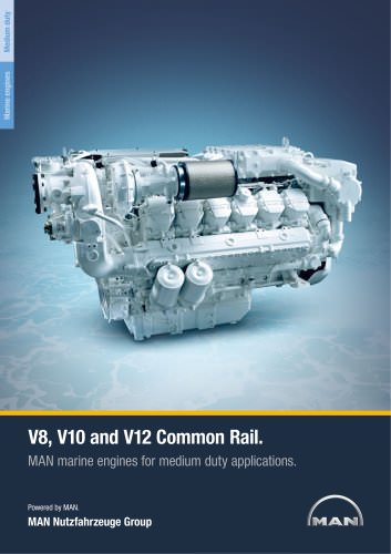 Marine engine V8-V10-V12 - medium duty