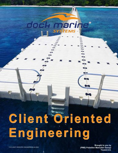 CLIENT ORIENTED ENGINEERING