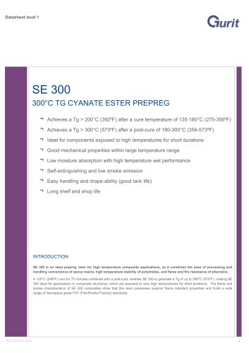 SE 300