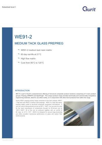 WE91 - 2