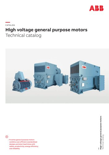 High voltage general purpose motors