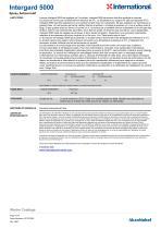 Intergard 5000 - 4