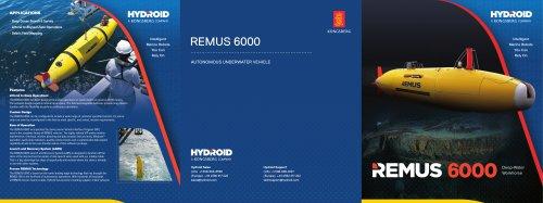 REMUS 6000