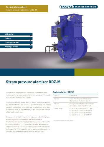 Steam pressure atomizer DDZ-M