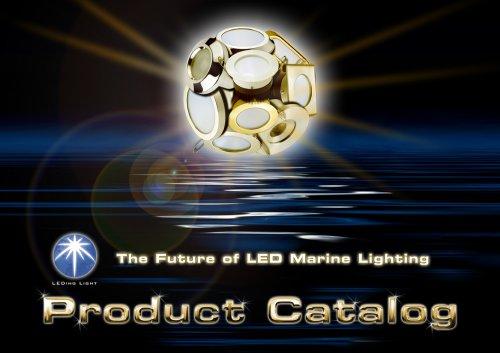LEDing Light 2013 Portfolio